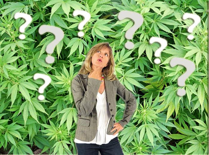 5 cosas que probablemente no sabías sobre el cannabis