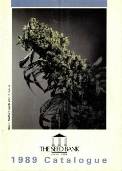 002_SENSI_SEEDS_Strains_that_made_our_brand-250x349