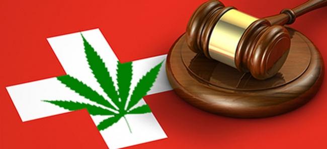 El parlamento sueco está de acuerdo con proyectos de la legalización de la marihuana, pero no con la regulación rápida de ello.