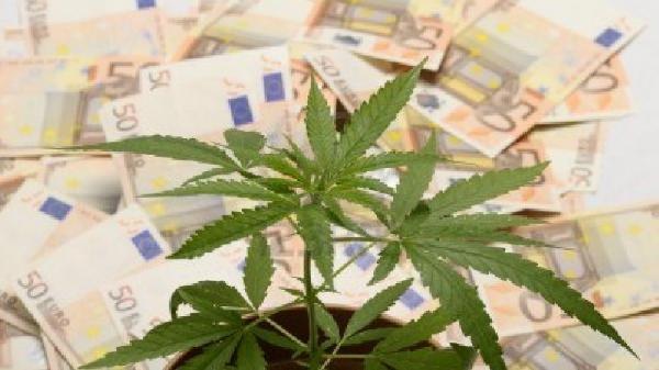 14438090-cannabis-impianti-e-sacco-di-soldi-euro-da-droga-780x438