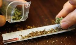 7-Cannabis-in-Czech-Republic-250x150