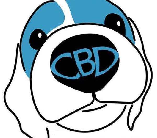 CBD-dog-1-500x438