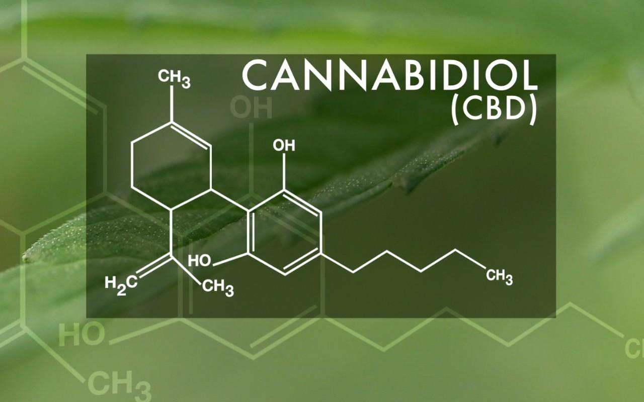 Un nuevo estudio comunica que el cannabis es efectivo para los transtornos del movimiento.
