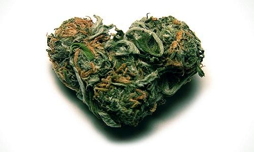 Cannabis_and_Love