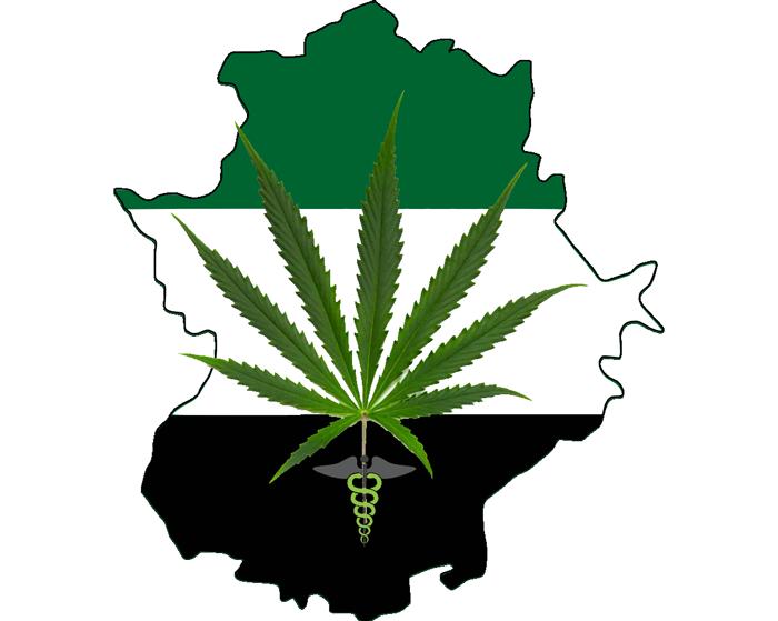 Propuesta para legalizar la marihuana medicinal en Extremadura