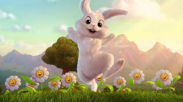 Funny-Rabbit-37-780x438