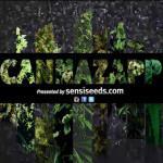 History-of-cannabis-videos-Sensi-Seeds-blog-150x150