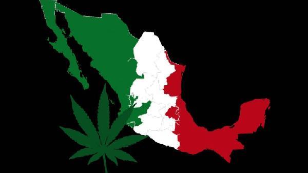 Marihuana-Mexico-1-780x438