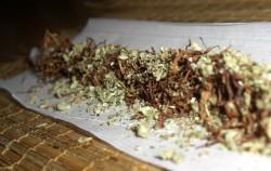 Tobacco-Cannabis-1-250x158
