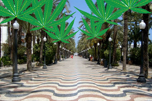 Alicante regulariza clubs de cannabis