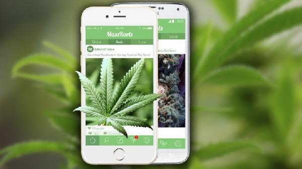 apple-marihuana-2-780x438
