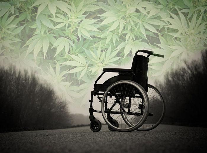 Beneficios del cannabis frente a la Esclerosis Múltiple