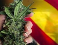 cannabis-spain-fuente-taringa-200x155