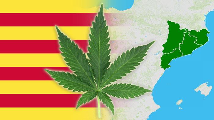Cataluña presenta una regulación para el cultivo, consumo y transporte de cannabis
