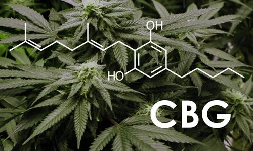 cbg-ultimate-cannabinoid-08-10-1