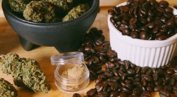 coffee-cannabis1-600x330