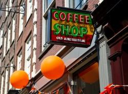 coffeeshop-old-amsterdam-Sensi-Seeds-blog