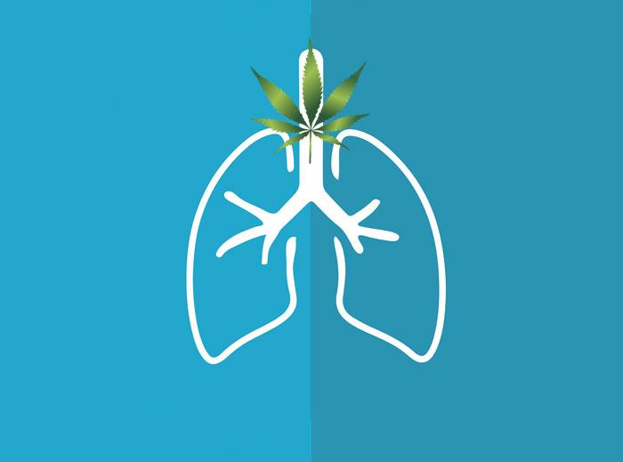 El aceite de CBD puede ser una ayuda contra el asma
