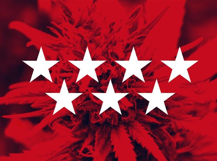 El cannabis crece en Madrid