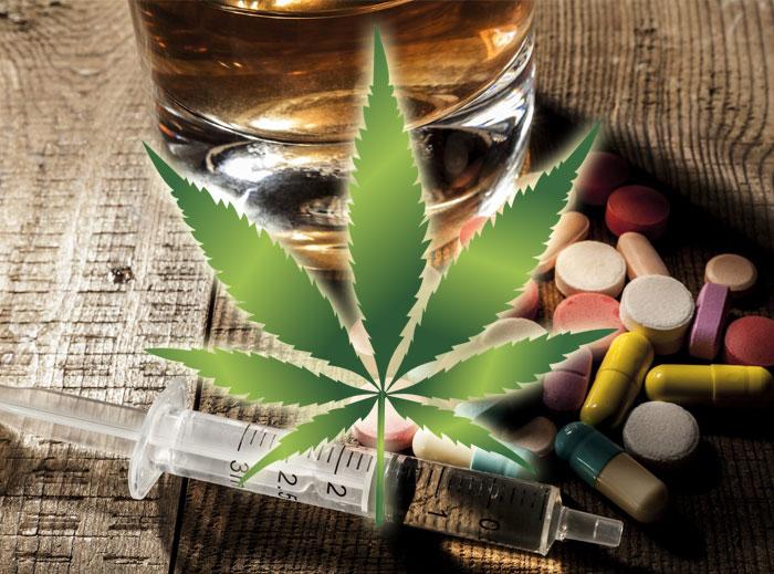 El cannabis podría ayudar a dejar otras sustancias según este estudio