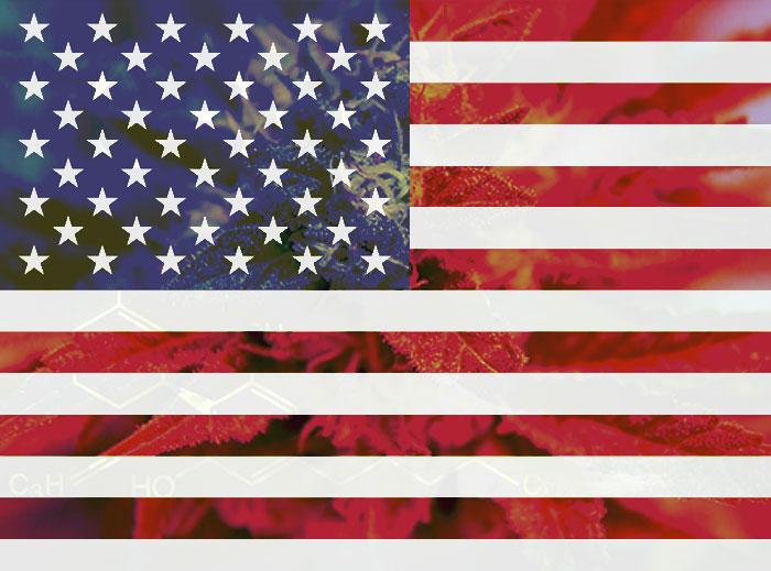 El Congreso de Estados Unidos decide si se debe sacar el cannabis de la lista de sustancias prohibidas