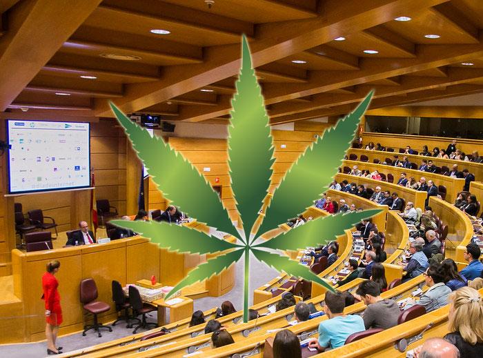 El congreso poner en marcha la regulación del cannabis medicinal por mayoría absoluta