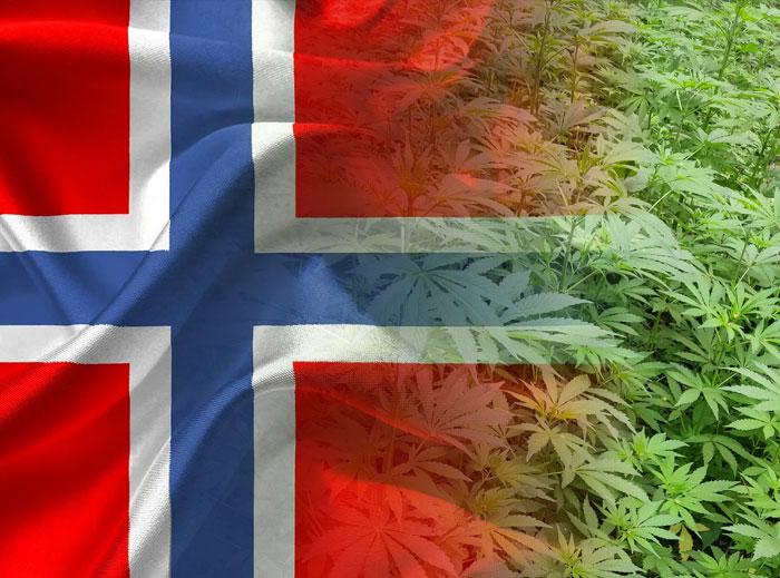 En Noruega se plantean la despenalización y no solo del cannabis
