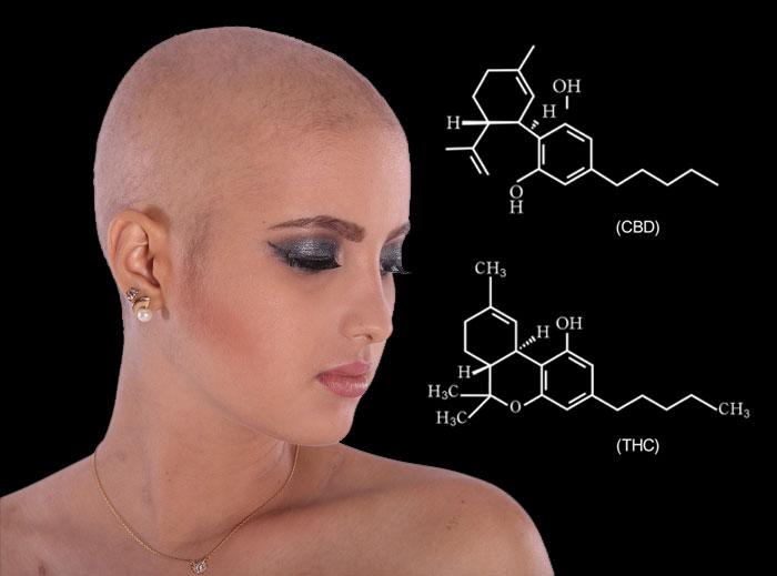 Estos estudios demuestran que el cannabis es eficaz para tratar los efectos secundarios de la quimioterapia