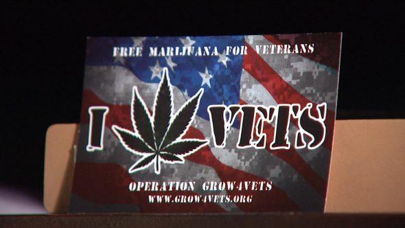 grow4vets-free-marijuana-for-vets-hbtv-hemp-beach-tv-590x332