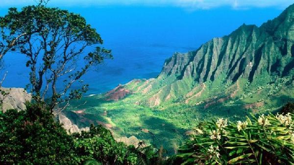 hawaii-780x438