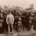 hemp-farmer-1024x803-150x150