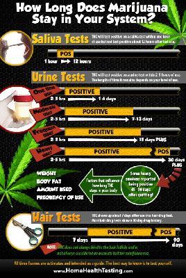 how-long-does-marijuana-stay-685x1024