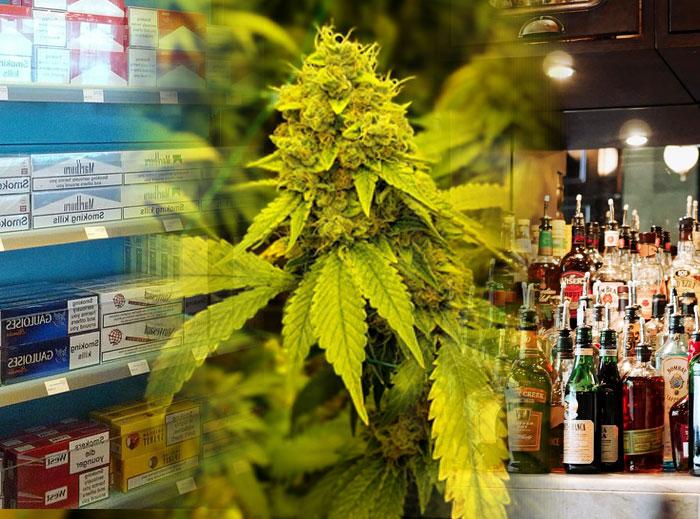 Las distribuidoras de tabaco y alcohol se van introduciendo en el mercado cannabico
