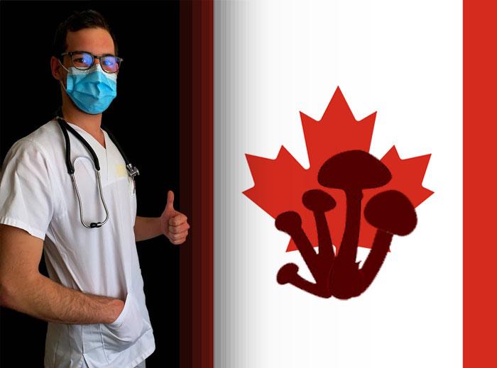 Los profesionales sanitarios canadienses podrán tomar psilocibina para conocer sus efectos