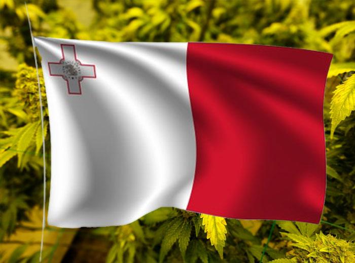 Malta aboga por el consumo responsable del cannabis