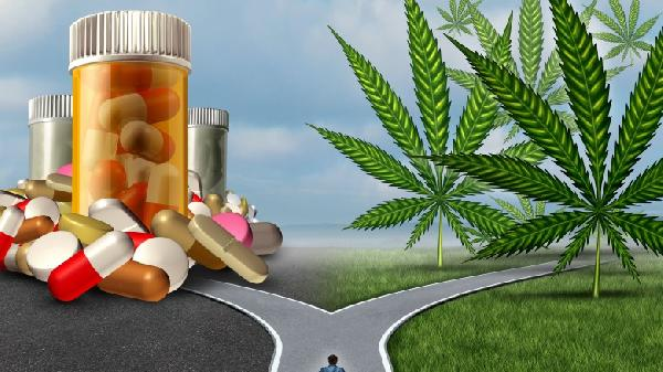 marijuana-choices-dpc-780x438