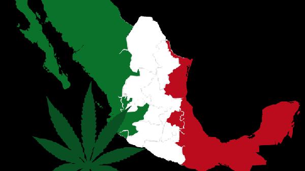 mc3a9xico-marihuana-780x438