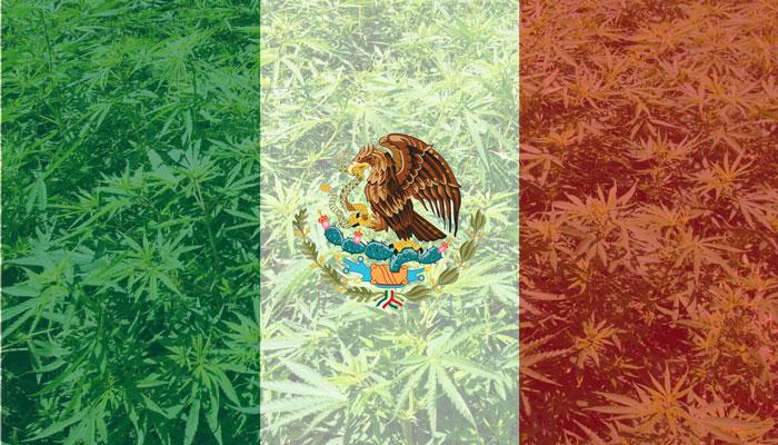 Mexico legaliza el cannabis medicinal