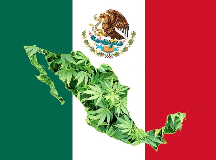 México despenaliza el consumo de marihuana pero aún no su comercialización