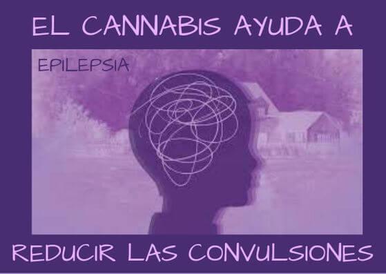 EL CANNABIS REDUCE LAS CONVULSIONES EN NIÑOS CON EPILEPSIA GRAVE