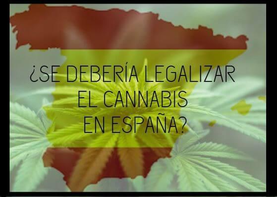 ¿SE DEBERIA LEGALIZAR EL CANNABIS EN ESPAÑA?
