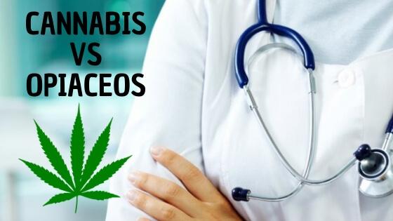 noticia_web_cannabis_versus_opiaceos__1_