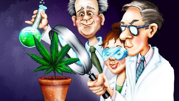 pot-marijuana-science-cartoon-hbtv-hemp-beach-tv-1-780x438