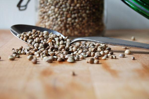 roasted_hemp_seeds