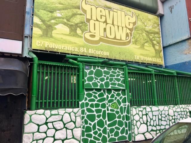 Pasado y futuro del cannabis en el sur de Madrid. Neville grow 20 años de floracion.