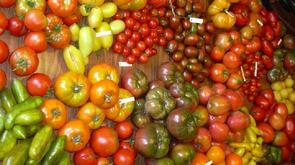 tomatoes-780x438