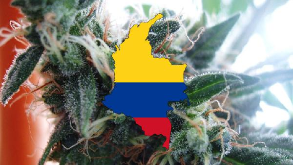 weed-drug-addiction-colombia-bogota-780x438