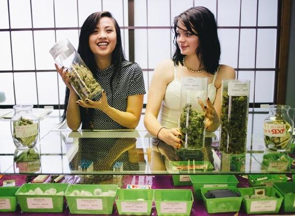 willieweed_cannababes_christine-dong_1widea_