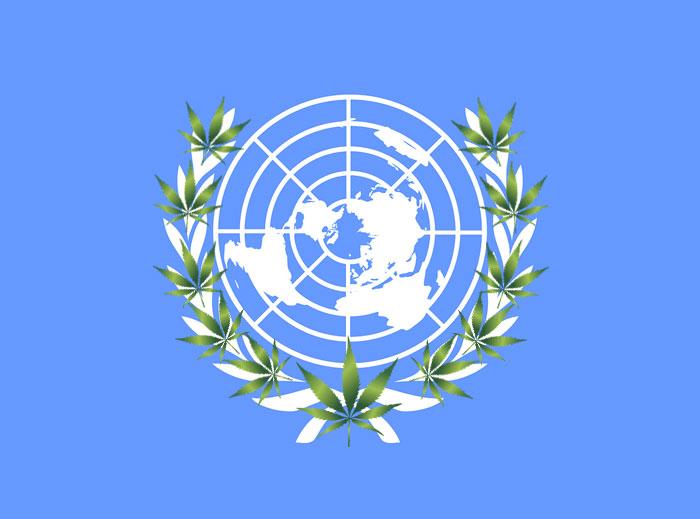 Ya es oficial, la ONU reconoce las propiedades medicinales del cannabis