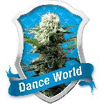 Dance World 3 Semillas